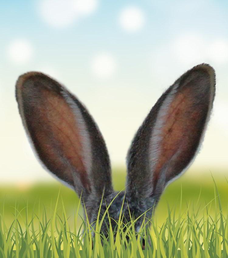 Unser Hoppelhase war fleißig. Eier suchen und tolle Preise gewinnen!